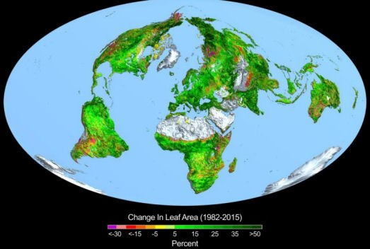 Change In Leaf Area (1982-2015)